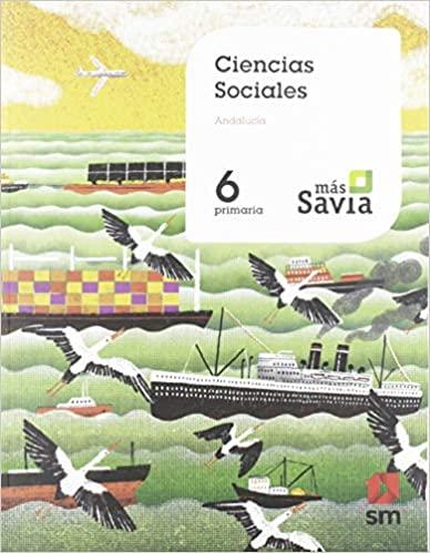 Key Concepts. Mas Savia. 6 Primaria. Ciencias sociales