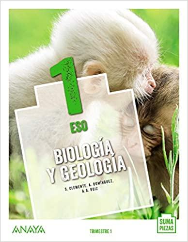 Suma Piezas. 1º de la Eso. Biología y Geología